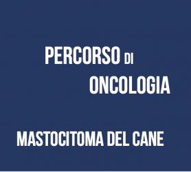 Percorso di oncologia: mastocitoma del cane