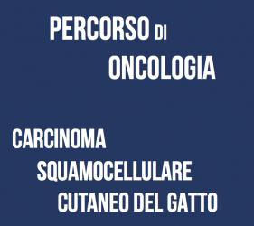 Carcinoma squamocellulare cutaneo del gatto