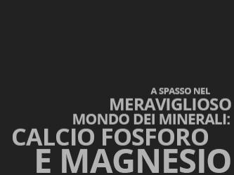 A spasso nel meraviglioso mondo dei minerali: Calcio Fosforo e Magnesio